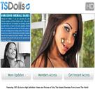 TS Dolls